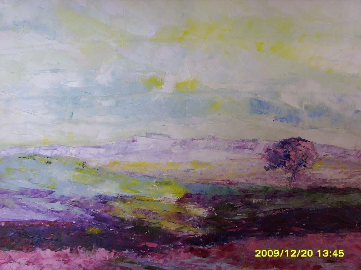 Amanecer 2009