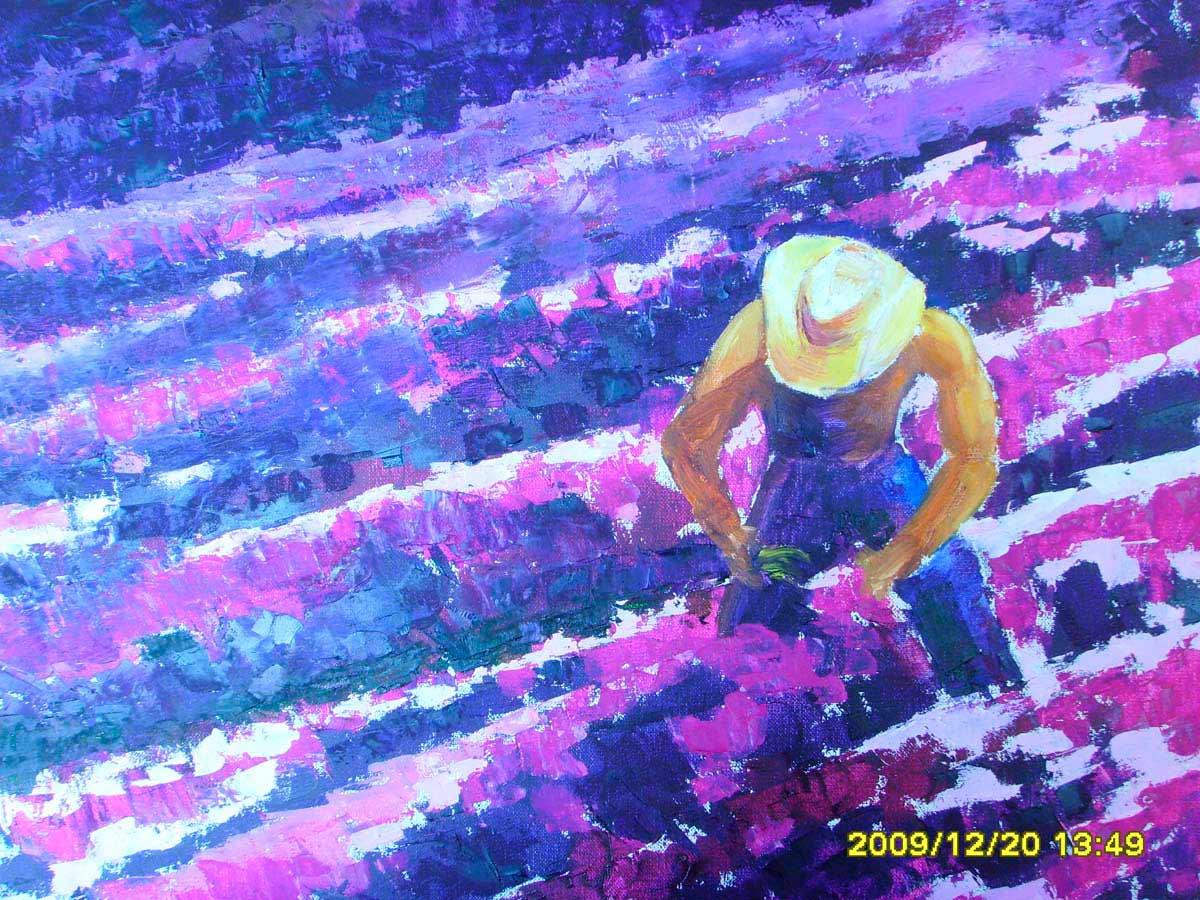 La cosecha 2009