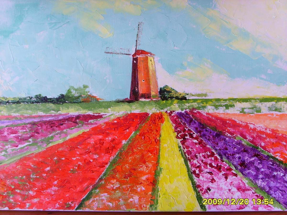 Tulipanes y molino 2009
