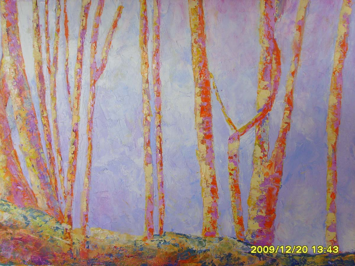 Bosque en ulzama 2009